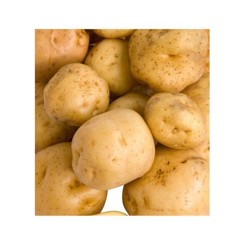 Pomme de terre spunta great pomme de terre spunta cuisson - Cuisiner les pommes de terre de noirmoutier ...