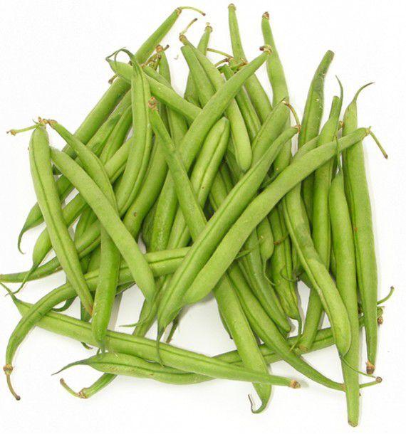 Haricot nain mangetout castandel jacques briant plante en - Haricot mange tout ...
