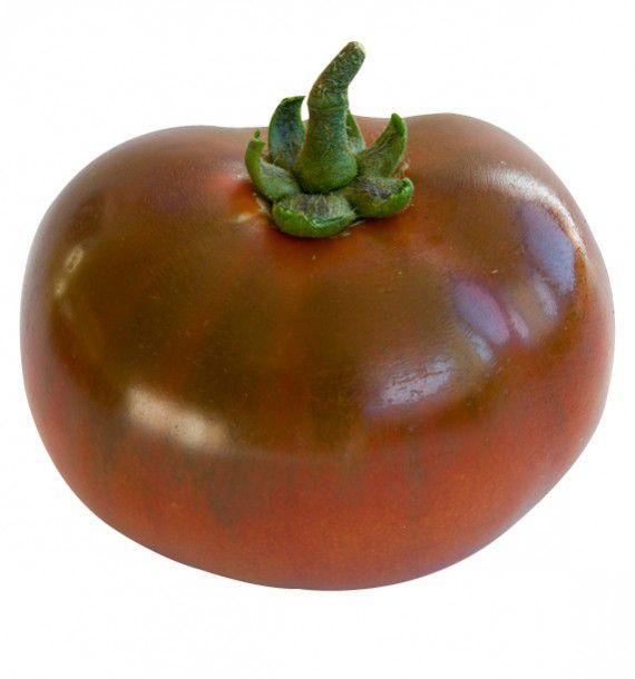 Tomate noire de crimee plante en ligne - Noir de crimee ...
