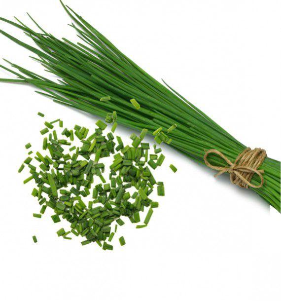 Ciboulette plante en ligne for Plantes en ligne