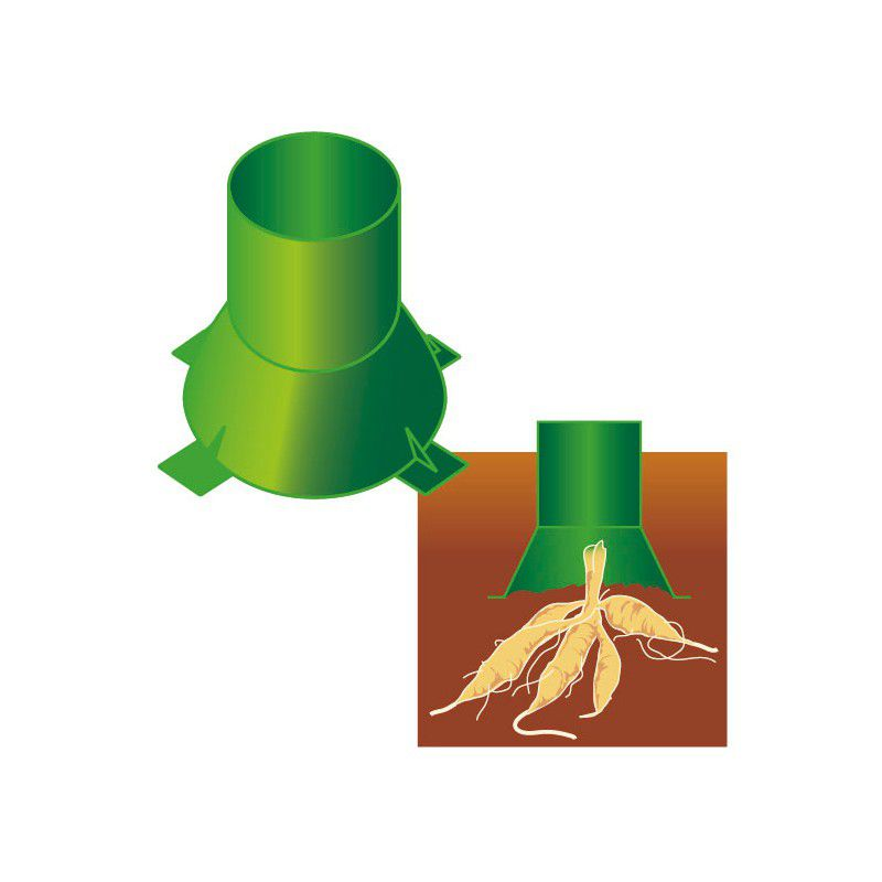 Tuteur dahlia plante en ligne for Plante en ligne