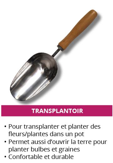 transplantoir_1.png