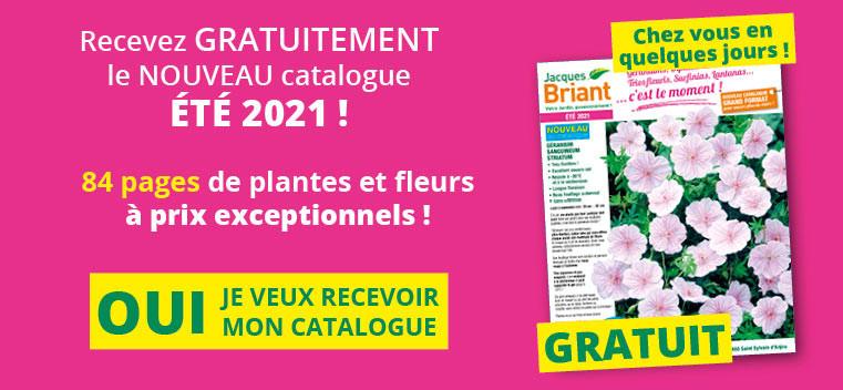 Demandez votre nouveau catalogue été 2021 GRATUIT !