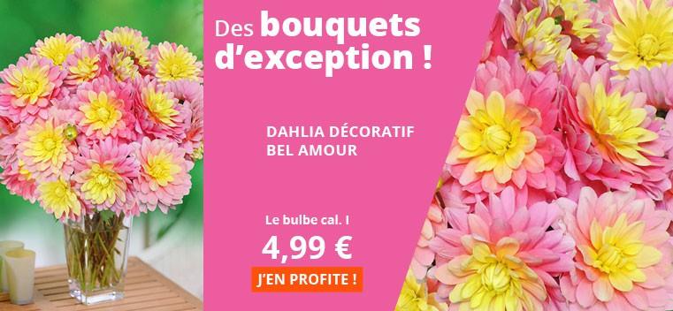 Des bouquets d'exception !