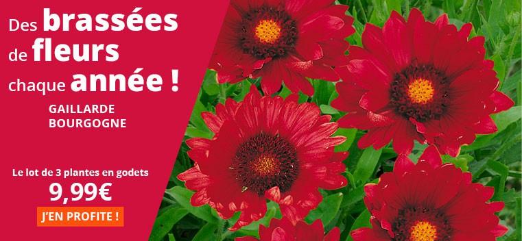 Des brassées de fleurs chaque année !