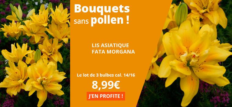 Bouquets sans pollen !