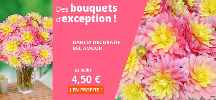Des bouquets d'exception !