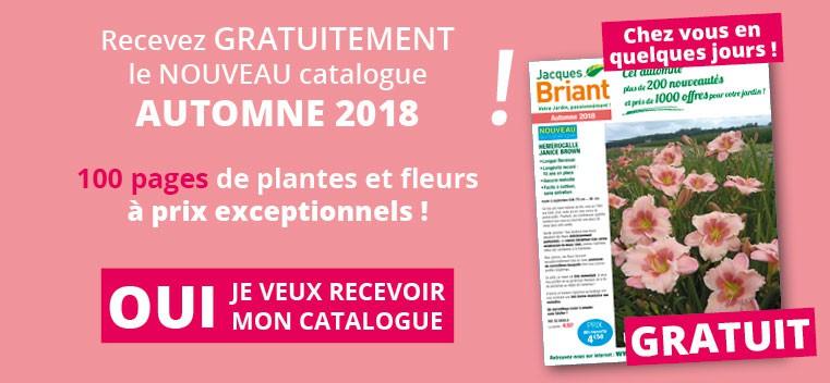 Demandez votre nouveau catalogue Automne 2018 GRATUIT !