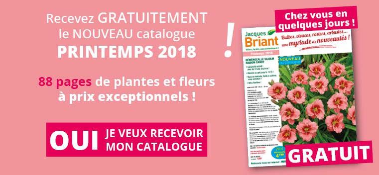 Demandez votre nouveau catalogue Printemps 2018 GRATUIT !