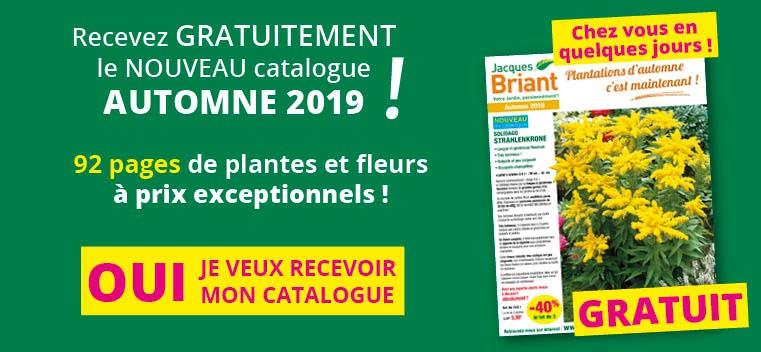 Demandez votre nouveau catalogue AUTOMNE 2019 GRATUIT !