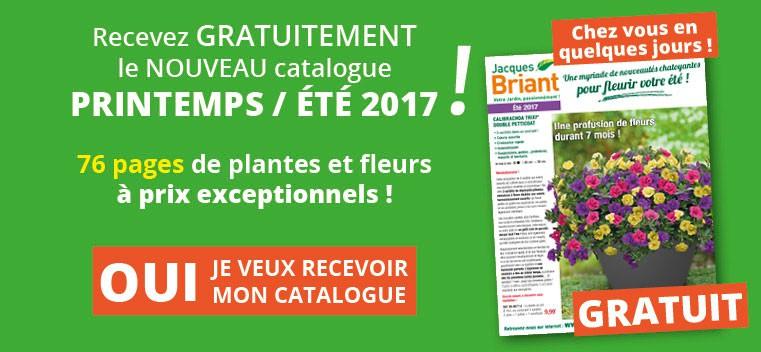 Demandez votre nouveau catalogue Printemps été 2017 GRATUIT !