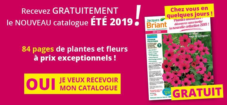 Demandez votre nouveau catalogue Été 2019 GRATUIT !