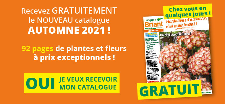 Demandez votre nouveau catalogue automne 2021 GRATUIT !