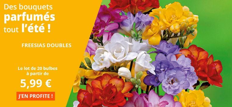Des bouquets parfumés tout l'été !