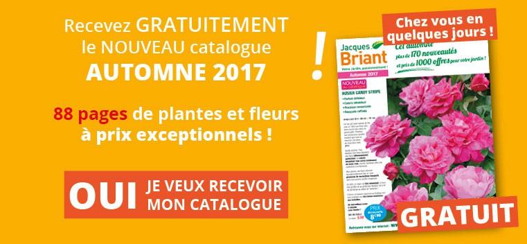 Demandez votre nouveau catalogue Automne 2017 GRATUIT !