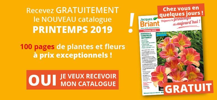 Demandez votre nouveau catalogue Printemps 2019 GRATUIT !