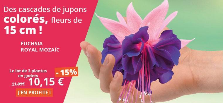 Des cascades de jupons colorés, fleurs de 15 cm !