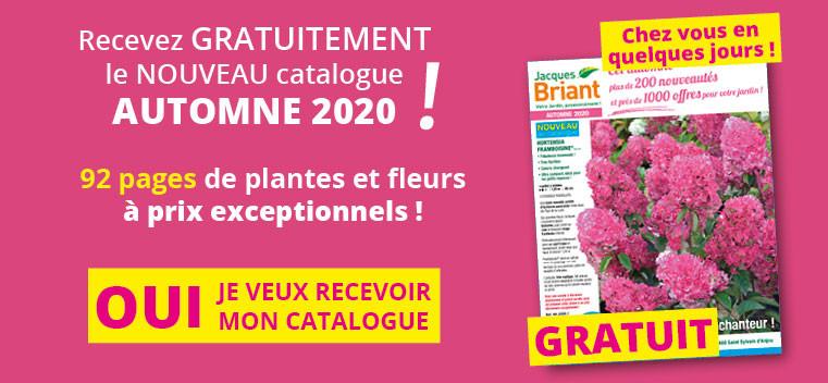 Demandez votre nouveau catalogue AUTOMNE 2020 GRATUIT !