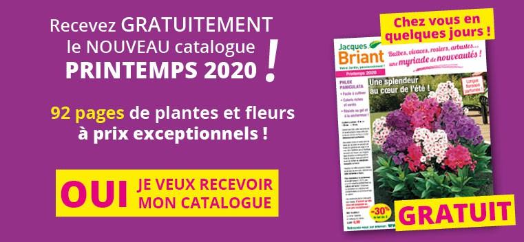 Demandez votre nouveau catalogue PRINTEMPS 2020 GRATUIT !